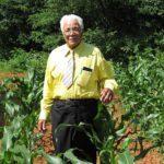 David in his corn